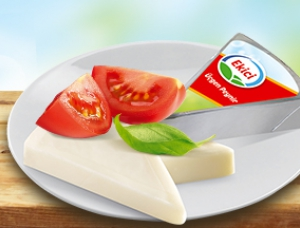 SPREADABLE TRIANGULAR CHEESE